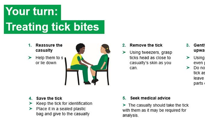 KS2-tick bites-Your turn