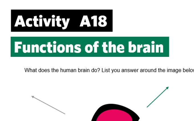 KS2-A18-functions of the brain