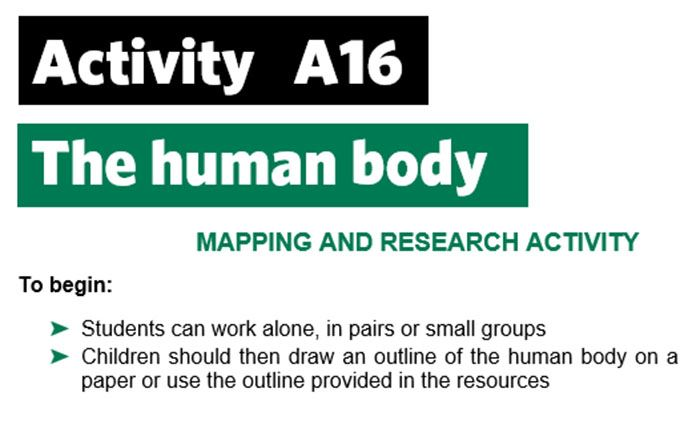 KS3-A16-The human body-teacher