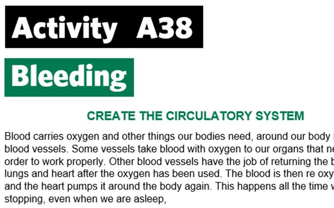 KS3-A38-Create the circulatory system