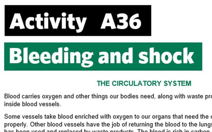 KS4-A36-Create circulatory system