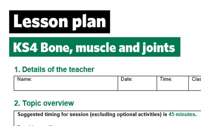 KS4-Bone muscle and joint-lesson plan