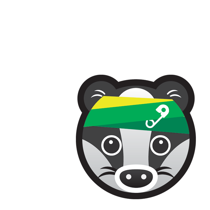 First Aid Badger subject icon showing a cartoon badger's face wearing a multi-coloured bandage secured with a safety pin.